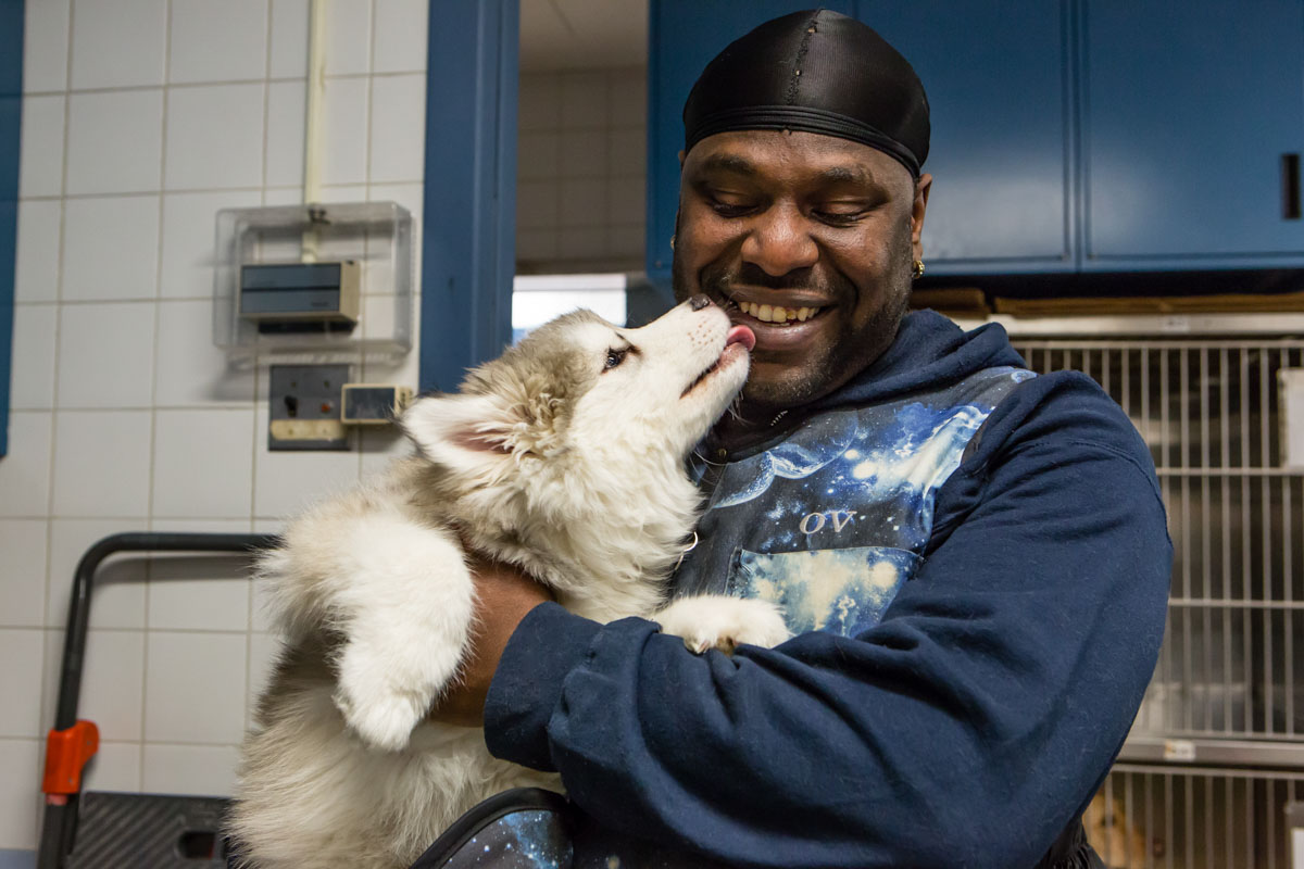 A staff member and an affectionate dog, for the Animal Medical Center